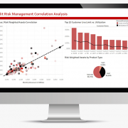 Dashboard: Risk Management (by SIEGER)